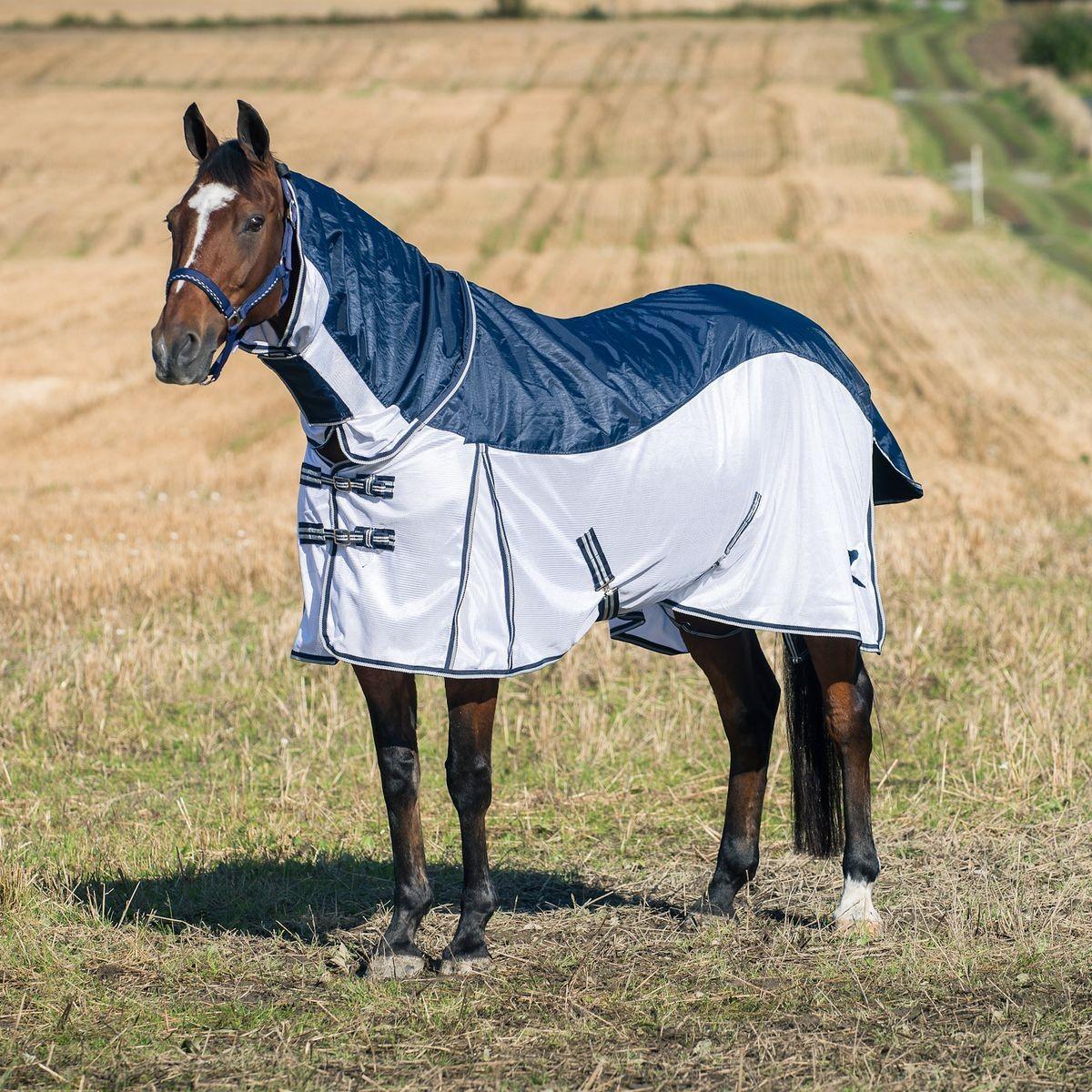 so funktioniert die fliegenabwehr pferdesport reitsport pferdesport fahrsport und. Black Bedroom Furniture Sets. Home Design Ideas
