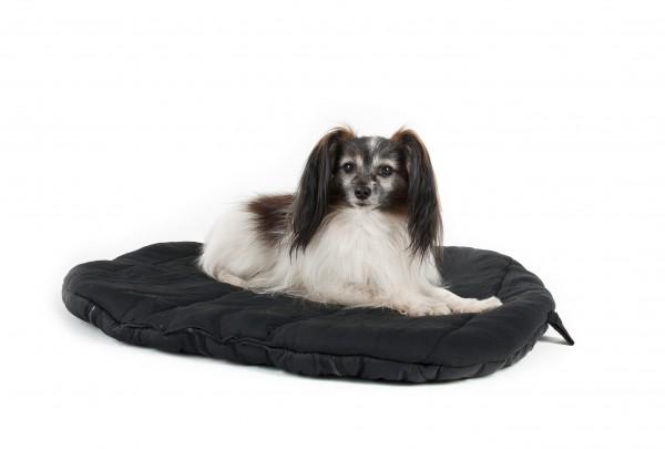 Dieses ovale Hundebett von Back on Track kann auf jede Reise mitgenommen und benutzt werden. Die Gummiapplikationen auf der Unterseite verhindern ein Verrutschen auf glatten Untergründen. Durch das Welltex® Gewebe wird die Blutzirkulation stimuliert und e