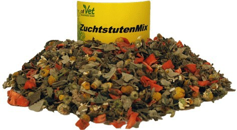 Zuchtstuten Mix