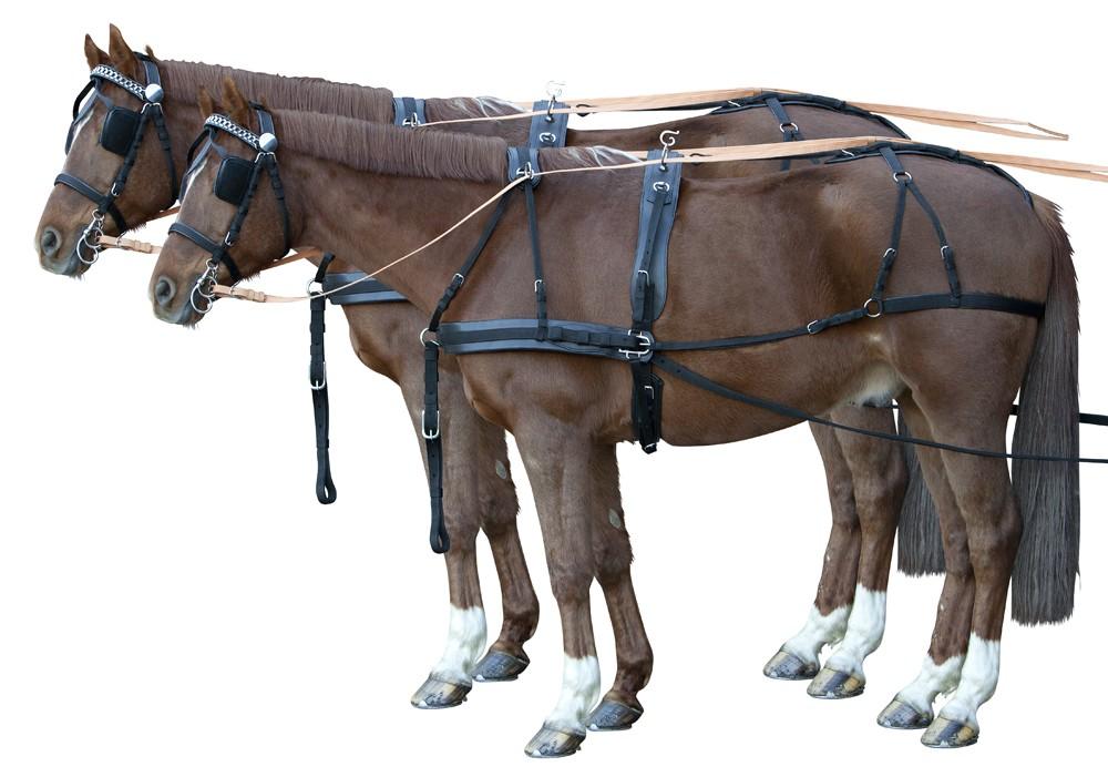 zweisp nnergeschirr synthetic fahrgeschirre fahrsport pferdesport reitsport. Black Bedroom Furniture Sets. Home Design Ideas