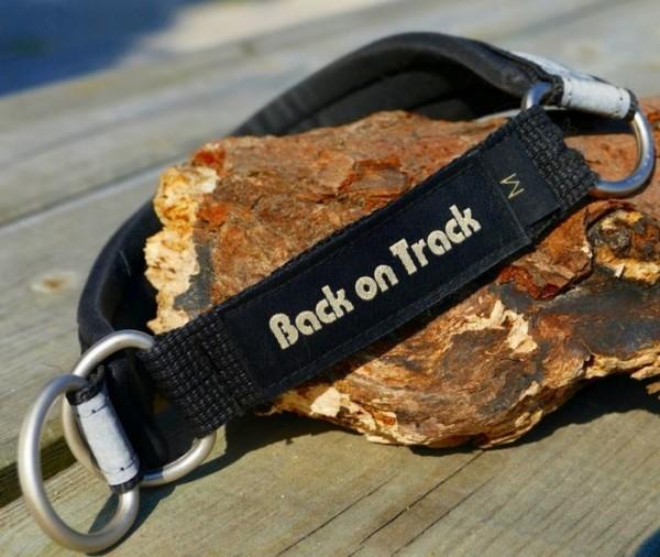 Back on Track Hundehalsband, schwarz/grau