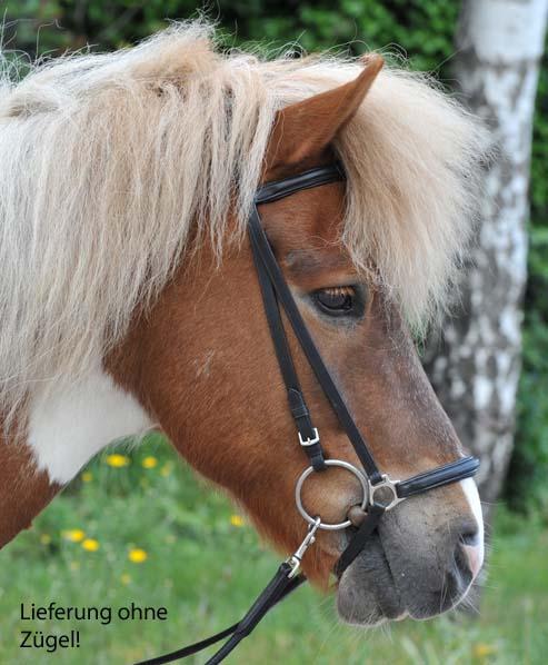 trensen und z gel reitsport pferdesport reitsport pferdesport fahrsport und. Black Bedroom Furniture Sets. Home Design Ideas